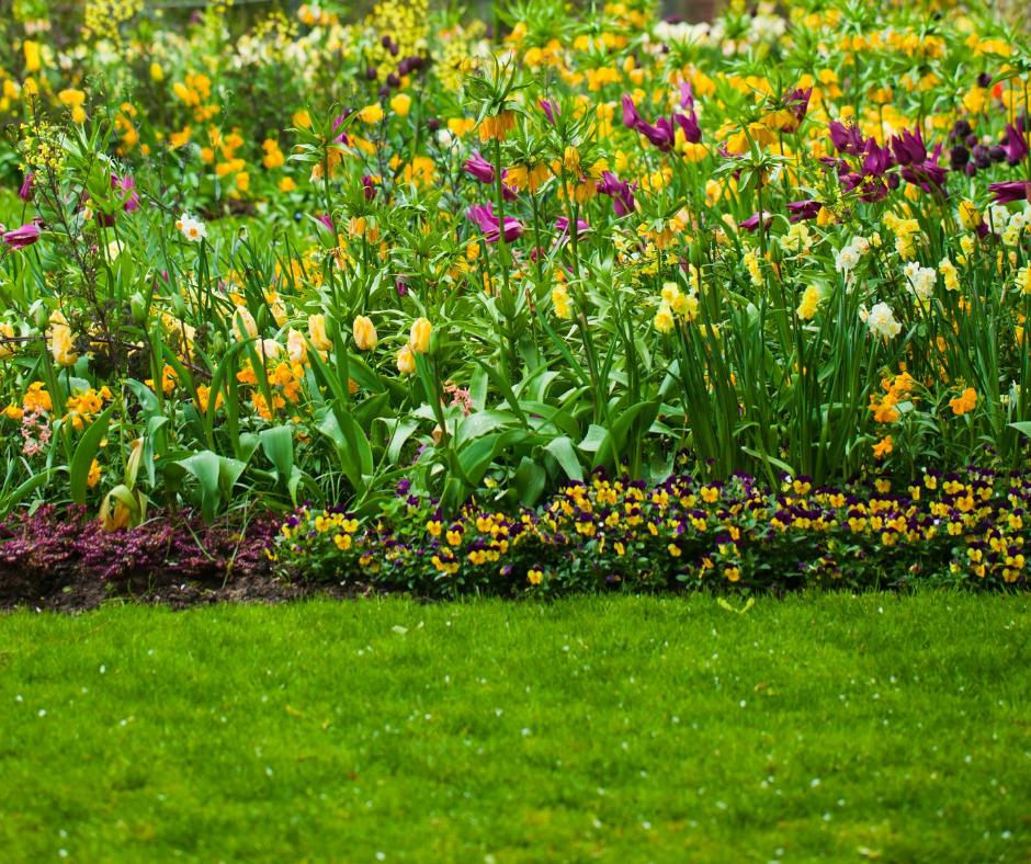 Garden Services & Landscaping